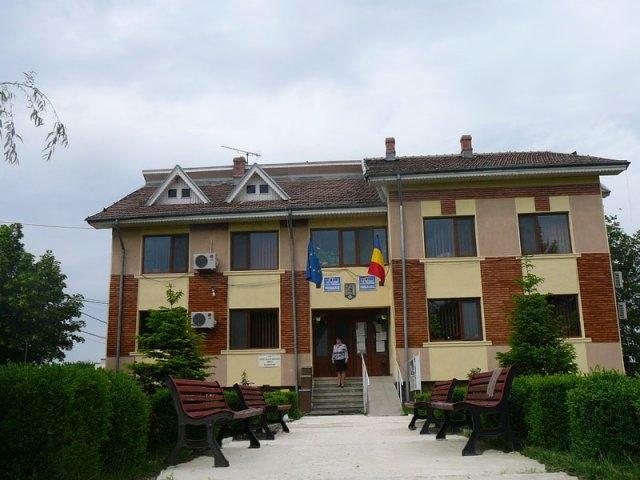 Primaria Radovanu - site nou oficial